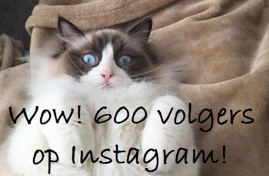 600 instagram Mauws.nl