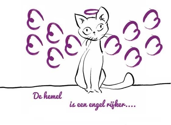 Kattengedicht het gemis
