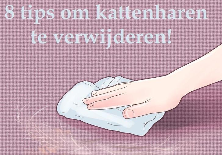 Tips om kattenharen gemakkelijk verwijderen