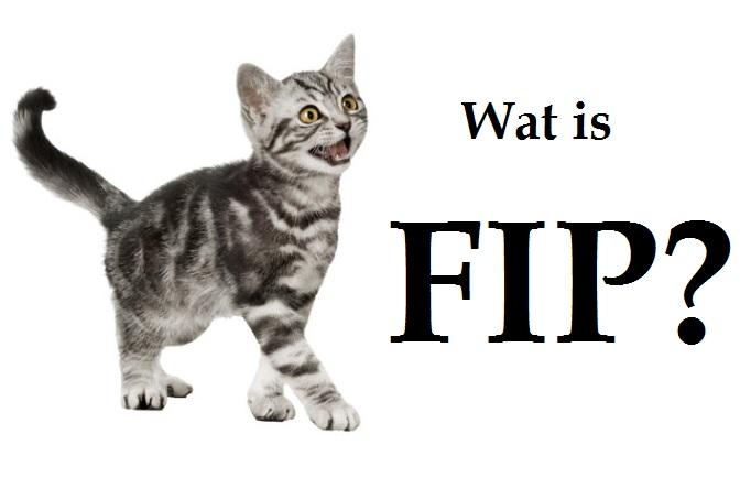 Wat is FIP?
