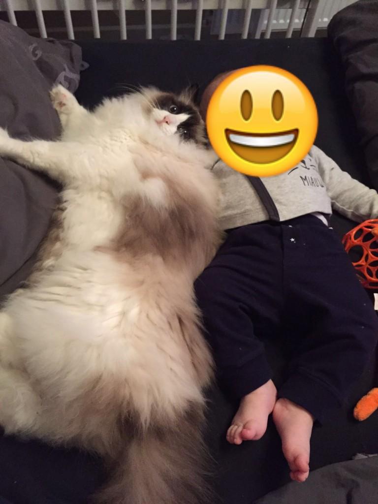 Mauws en baby