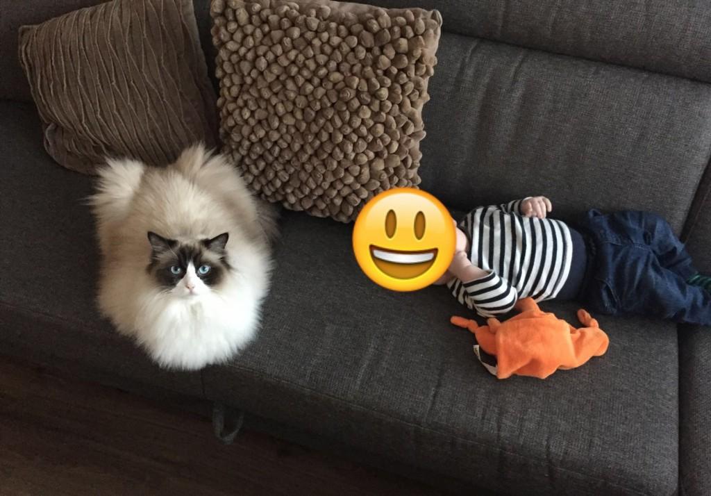 Mauws met baby