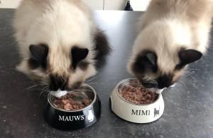 Mauws en Mimi - wereld dierendag